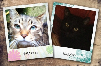 Smartie and Scooter
