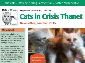 cic-newsletter-summer-2015-blog-featured