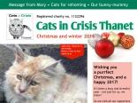 cic-newsletter-winter2016-featured
