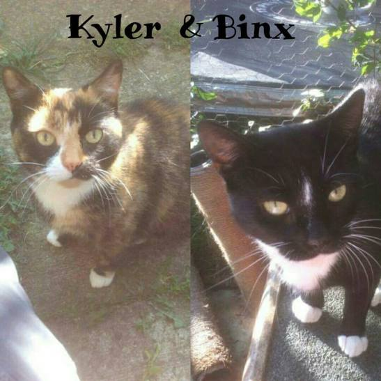Kyler and Binx 2.jpg